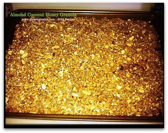 Almond Coconut Honey Granola